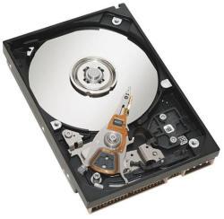 IBM 1TB 7200rpm SAS (49Y1876)