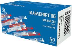 Biofarm Magnefort Magneziu + Vitamina B6, Biofarm, 50 drajeuri