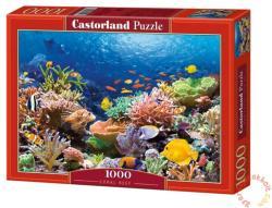 Castorland Korall zátony 1000 db-os (C-101511)