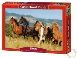 Castorland Mangalarga Marchadors 1000 db-os (101993)