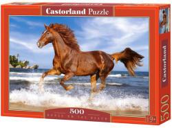 Castorland Ló a tengerparton 500 db-os (B-51175)