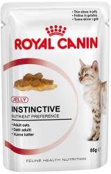 Royal Canin FHN Instinctive 85g