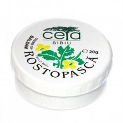Plafar Unguent Rostopasca, 20 grame, Ceta Sibiu (FSH3948)