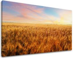 Tablouri canvas PEISAJE KR008E11 (tablouri moderne pe pânză) (XOBKR008E11)
