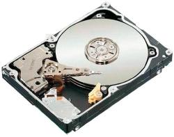 Seagate Constellation 500GB 64MB 7200rpm ST9500620SS