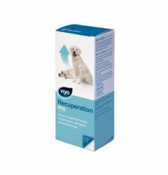 Viyo Recuperation Dog 150ml