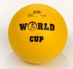 Plasto World Cup