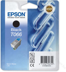 Epson T066