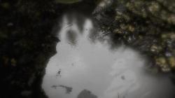 starmops Reflecting Fate (PC)