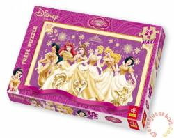 Trefl Disney Princess 24 (14087)