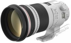 Canon EF 300mm f/2.8L IS II USM (AC4411B005AA)