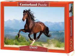 Castorland Andalúz ló 1500