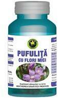 Hypericum Plant Pufulita cu Flori Mici 60 capsule Hypericum