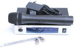 Soundking EW 101