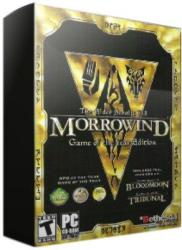 Ubisoft The Elder Scrolls III Morrowind (PC)