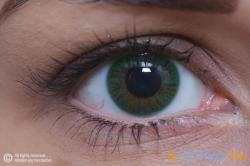 MAXVUE VISION ColourVUE Egyrétegű - 3 havi (2 db)