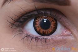 Eye Contact Crazy Twilight - 3 havi (2 db)