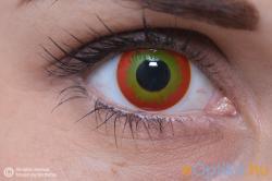 Eye Contact Crazy Wildfire - 3 havi (2 db)