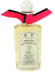 Penhaligon's Night Scented Stock EDT 100ml