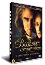 Beethoven árnyékában (2006)