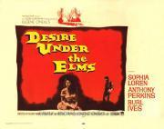 Vágy a szilfák alatt /DVD/ (1958)