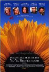 Vagány Nők Klubja /DVD/ (2002)