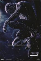 Pókember 3. /DVD/ (2007)