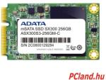 A-Data XPG SX300 256GB ASX300S3-256GM