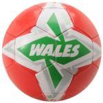 Sondico National Football