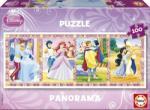 Educa Panorama Printesele Disney 100 (13500) Puzzle