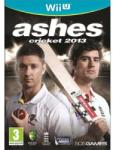 505 Games Ashes Cricket 2013 (Wii U) Játékprogram