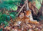 Castorland Jaguar in Jungla 3000 (300280) Puzzle