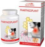 DACIA PLANT Pharyngoplant tabletta 60db