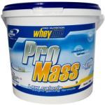 Pro Nutrition Pro Mass - 6000g