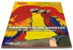 DACO Carton colorat A4 asortat DACO 160 g/mp