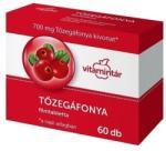 Vitamintár Tőzegáfonya 60db