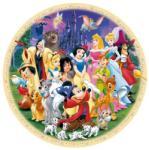 Ravensburger Minunata Lume Disney 1000 rvspa15784 Puzzle