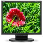 NEC MultiSync E171M Monitor