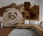 BeeStick Fototapet cu Trandafir Alb Negru - 360x254 cm (093__decow)