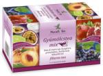 Mecsek-Drog Kft Gyümölcstea Mix 20 filter