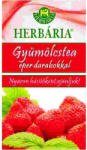 Herbária Gyümölcstea Eper Darabokkal 120g