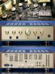 Leben CS-600 Amplificator