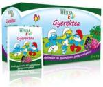 Herbária Herba Kids Erdeigyümölcs Tea 20 filter