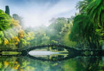 BeeStick Fototapet Bridge in the sunlight - 366x254 cm (00132__AGW)