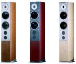 Audiovector SR 6 Avantgarde Boxe audio