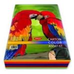 DACO Carton colorat A4 asortat DACO 120 g/mp