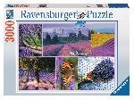 Regio Regio: Provence csodája: a levendula - 3000 db-os panoráma puzzle (34138) - Puzzle / 3000-4999 darab