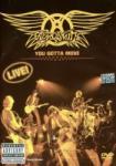 Aerosmith You Gotta Move - Live