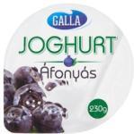 Galla gyümölcsjoghurt 230g