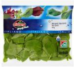 eisberg Italiano bébi spenót (80g)